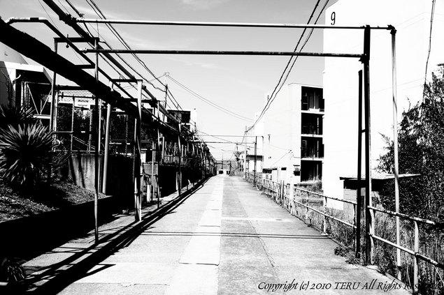 2010-04-03-102.JPG