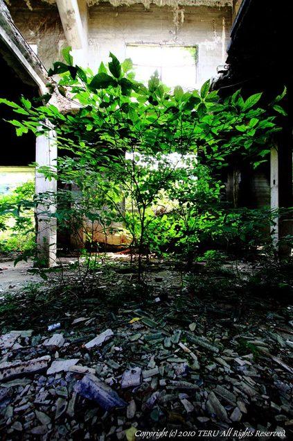 2010-07-25-003.jpg