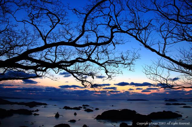 2011-01-13-001.jpg