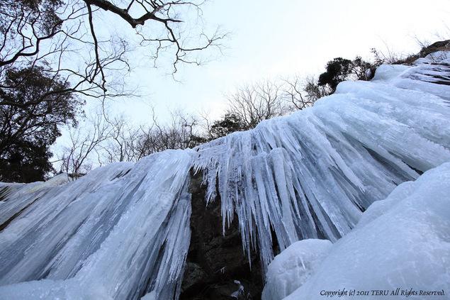 2011-01-23-002.jpg