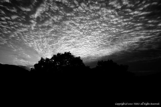 2012-01-003-002.jpg